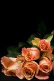 πορτοκαλιά τριαντάφυλλα δεσμών Στοκ Φωτογραφίες