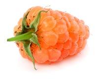 πορτοκαλιά ώριμα σμέουρα που απομονώνονται στην άσπρη μακροεντολή υποβάθρου Στοκ φωτογραφία με δικαίωμα ελεύθερης χρήσης