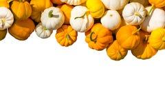 Πορτοκαλιές κολοκύθες και άσπρες κολοκύθες που απομονώνονται στο άσπρο υπόβαθρο Στοκ φωτογραφίες με δικαίωμα ελεύθερης χρήσης