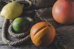 Πορτοκαλιοί γκρέιπφρουτ και ασβέστης λεμονιών εσπεριδοειδούς στο παλαιό ξύλινο υπόβαθρο Στοκ εικόνες με δικαίωμα ελεύθερης χρήσης