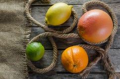 Πορτοκαλιοί γκρέιπφρουτ και ασβέστης λεμονιών εσπεριδοειδών στο παλαιά ξύλινα υπόβαθρο και burlap Στοκ φωτογραφίες με δικαίωμα ελεύθερης χρήσης