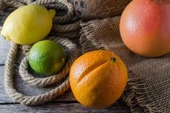 Πορτοκαλιοί γκρέιπφρουτ και ασβέστης λεμονιών εσπεριδοειδών στο παλαιά ξύλινα υπόβαθρο και burlap Στοκ Εικόνες