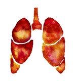 Πορτοκαλιοί πνεύμονες με την επίδραση γαλαξιών στοκ εικόνες