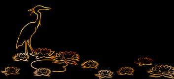 Πορτοκαλής ερωδιός και λουλούδι Lotus στο μαύρο υπόβαθρο Στοκ Φωτογραφία