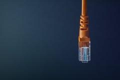 Πορτοκαλής πλαστικός συνδετήρας σύνδεσης του τοπικού LAN στο μαύρο υπόβαθρο Στοκ φωτογραφίες με δικαίωμα ελεύθερης χρήσης