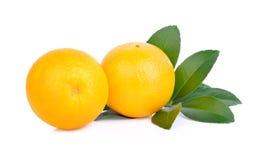 πορτοκαλί λευκό ανασκόπ&e Στοκ φωτογραφίες με δικαίωμα ελεύθερης χρήσης