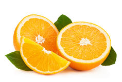 πορτοκαλί διάνυσμα καρπού σχεδίου εσπεριδοειδών σας Στοκ εικόνα με δικαίωμα ελεύθερης χρήσης