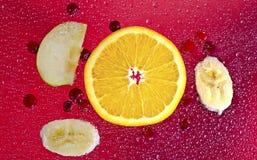 Πορτοκαλί κόκκινο υπόβαθρο των βακκίνιων Στοκ Εικόνες