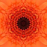 Πορτοκαλί ομόκεντρο κέντρο λουλουδιών. Kaleidoscopic σχέδιο Mandala Στοκ Φωτογραφίες