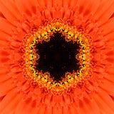 Πορτοκαλί ομόκεντρο Kaleidoscopic σχέδιο κεντρικού Mandala λουλουδιών Στοκ εικόνες με δικαίωμα ελεύθερης χρήσης