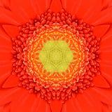 Πορτοκαλί ομόκεντρο Kaleidoscopic σχέδιο κεντρικού Mandala λουλουδιών Στοκ Φωτογραφία