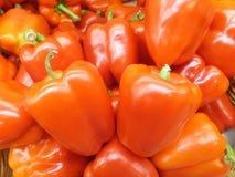 Πορτοκαλί πιπέρι κουδουνιών χρώματος στοκ εικόνες με δικαίωμα ελεύθερης χρήσης