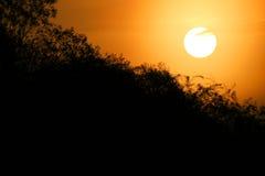 Πορτοκαλί πρωί στοκ φωτογραφίες