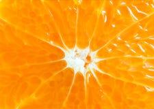 πορτοκαλί στενό επάνω υπόβαθρο φετών, πορτοκαλί μακρο υπόβαθρο και te Στοκ Εικόνες