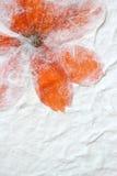 Πορτοκαλί υπόβαθρο εγγράφου λουλουδιών Στοκ Εικόνες