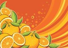 Πορτοκαλί υπόβαθρο φρούτων Στοκ εικόνα με δικαίωμα ελεύθερης χρήσης