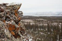 Πορτοκαλιά λίμνη Laberge Yukon Καναδάς taiga βράχου λειχήνων στοκ φωτογραφία με δικαίωμα ελεύθερης χρήσης