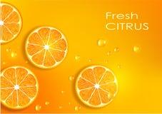 Πορτοκαλιά ανασκόπηση Στοκ φωτογραφίες με δικαίωμα ελεύθερης χρήσης