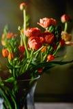 Πορτοκαλιά ανθοδέσμη νεραγκουλών στοκ εικόνες