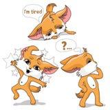 Πορτοκαλιά αλεπού ζώο αστείο Στοκ Εικόνες