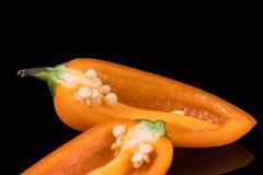 Πορτοκαλιά γλυκά πιπέρια που απομονώνονται στο Μαύρο Στοκ εικόνα με δικαίωμα ελεύθερης χρήσης