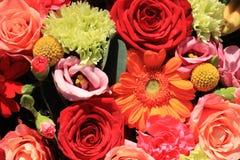 Πορτοκαλιά και κόκκινα γαμήλια λουλούδια Στοκ Εικόνες
