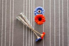 Πορτοκαλιά και μπλε λουλούδια στο βάζο Στοκ φωτογραφία με δικαίωμα ελεύθερης χρήσης