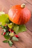 Πορτοκαλιά κολοκύθα με τα ισχία και τα χορτάρια στον καφετή ξύλινο πίνακα Στοκ φωτογραφίες με δικαίωμα ελεύθερης χρήσης