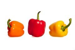 Πορτοκαλιά, κόκκινα και κίτρινα πιπέρια στο άσπρο υπόβαθρο Στοκ Εικόνες