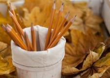 Πορτοκαλιά μολύβια και κίτρινα φύλλα Στοκ φωτογραφία με δικαίωμα ελεύθερης χρήσης
