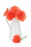 Πορτοκαλιά λουλούδια gerbera στη στάμνα στοκ εικόνα