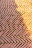 Πορτοκαλιά πορεία ποδιών Στοκ φωτογραφίες με δικαίωμα ελεύθερης χρήσης