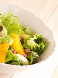 Πορτοκαλιά σαλάτα μαράθου Στοκ Εικόνες