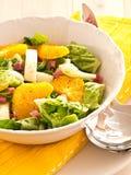 Πορτοκαλιά σαλάτα μαράθου Στοκ Εικόνα