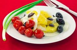 Πορτοκαλιά σαλάτα με τις ελιές, τις ντομάτες και το μάραθο στοκ εικόνα με δικαίωμα ελεύθερης χρήσης
