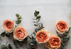 Πορτοκαλιά τριαντάφυλλα και διακοσμητικοί κλάδοι στο άσπρο κατασκευασμένο backgroun Στοκ εικόνα με δικαίωμα ελεύθερης χρήσης
