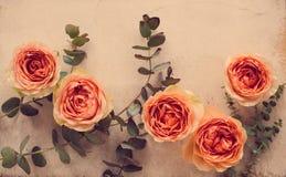 Πορτοκαλιά τριαντάφυλλα και διακοσμητικοί κλάδοι στο άσπρο κατασκευασμένο backgroun Στοκ φωτογραφίες με δικαίωμα ελεύθερης χρήσης
