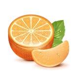 Πορτοκαλιά φέτα με τα πορτοκαλιά φρούτα  Στοκ Φωτογραφία