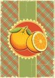 Πορτοκαλιά φρούτα. Τρύγος Στοκ Φωτογραφία