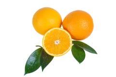 Πορτοκαλιά φρούτα με τα φύλλα Στοκ Εικόνες