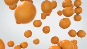 Πορτοκαλιά φρούτα που εμπίπτουν σε σε αργή κίνηση διανυσματική απεικόνιση