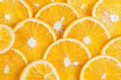 Πορτοκαλιά φρούτα στο τμήμα στο άσπρο νερό Στοκ φωτογραφίες με δικαίωμα ελεύθερης χρήσης