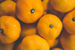 Πορτοκαλιά φρούτα - χρήσιμα για τα υπόβαθρα Στοκ Φωτογραφία
