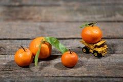 Πορτοκαλιά φρούτα tipper Στοκ εικόνες με δικαίωμα ελεύθερης χρήσης