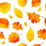 Πορτοκαλιά χρωματισμένα watercolor φύλλα φθινοπώρου άνευ ραφής Στοκ Εικόνα
