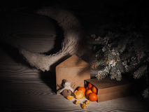 Πορτοκαλιά tangerines κοντά στα χειμερινά δέντρα απομονωμένη Χριστούγεννα διάθεση τρία σφαιρών λευκό Στοκ φωτογραφία με δικαίωμα ελεύθερης χρήσης