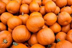 Πορτοκαλιές κολοκύθες αποκριών Στοκ φωτογραφία με δικαίωμα ελεύθερης χρήσης