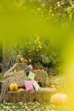 Πορτοκαλιές κολοκύθες στις θυμωνιές χόρτου με το φύλλωμα φθινοπώρου Στοκ φωτογραφίες με δικαίωμα ελεύθερης χρήσης