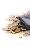 πορτοφόλι νομισμάτων λογ& Στοκ Εικόνες