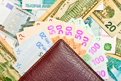 πορτοφόλι χρημάτων ανεμισ&ta Στοκ Εικόνες
